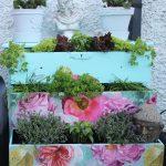 A Chest Of Drawer Herb Garden